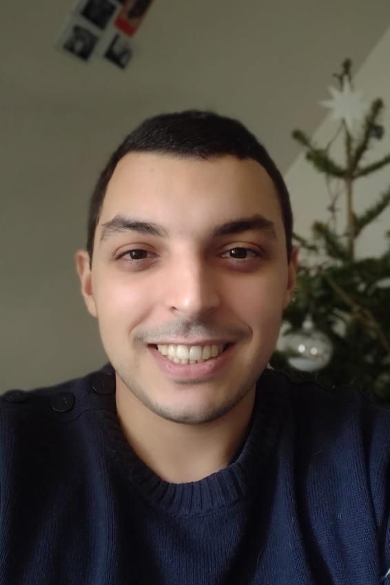 Walid El M'Selmi